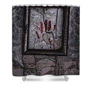 Framed Shower Curtain by Margie Hurwich