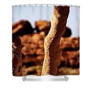 Framed Rock Shower Curtain