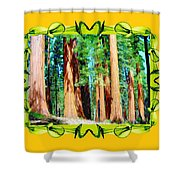 Framed Sequoias Shower Curtain
