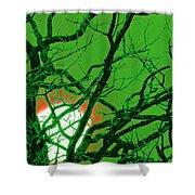 Frankenstein Moon Shower Curtain by First Star Art