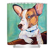 Frankie Shower Curtain