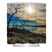 Frary Trail Trees Shower Curtain