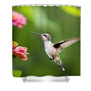 Free As A Bird Hummingbird Shower Curtain