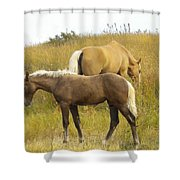 Free Peaceful  Joy With Nature Shower Curtain