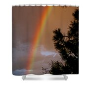 Free Rainbow 2 Shower Curtain