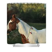 Free To Dream Shower Curtain