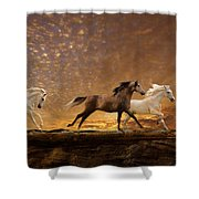 Freed Spirits Shower Curtain