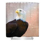 Freedom Flyer Shower Curtain
