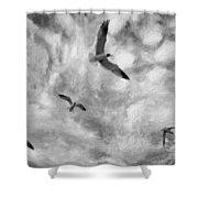 Freedom Impasto Bw Shower Curtain