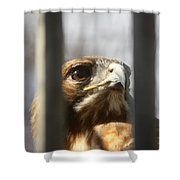 Freedom Isn't Free Shower Curtain