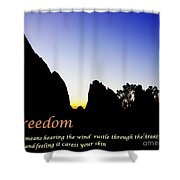 Freedom Means 002 Shower Curtain