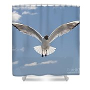 Freedom.. Shower Curtain