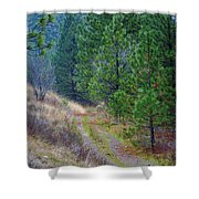 Freedom Road Shower Curtain