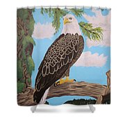 Freedom's Pride Shower Curtain