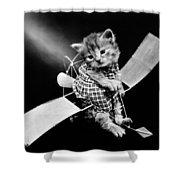 Frees Kittens, C1914 Shower Curtain