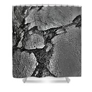 Freeway Pole Art Sailor-pole Art Photo Series Silver  Black Shower Curtain