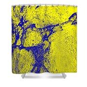 Freeway Pole Art Sailor-pole Art Photo Series Yellow Blue Shower Curtain