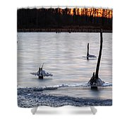 Freezing Lake Shower Curtain