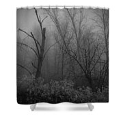Freezing Rogue Valley Fog At Night Shower Curtain