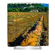 French Farm Near Lacoste Shower Curtain