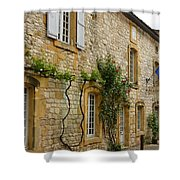 French City Hall Shower Curtain
