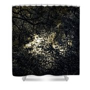 Frequencies Of Nature Shower Curtain