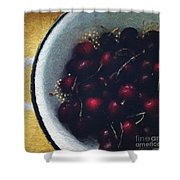 Fresh Cherries Shower Curtain