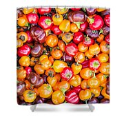 Fresh Colorful Hot Peppers Shower Curtain