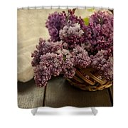 Fresh Lilacs In Brown Basket Shower Curtain