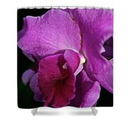 Fresh Orchid Shower Curtain