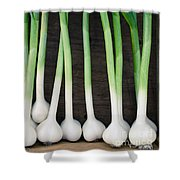 Fresh Picked Garlic Shower Curtain