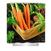 Fresh Picked Healthy Garden Vegetables Shower Curtain