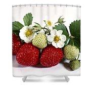 Gardenfresh Strawberries Shower Curtain