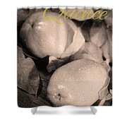 Fresh Quince Distressed Sepia Text Shower Curtain
