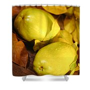 Fresh Quince Shower Curtain