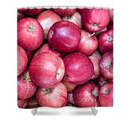 Fresh Red Apples Shower Curtain