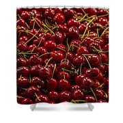 Fresh Red Cherries Shower Curtain