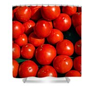 Fresh Ripe Red Tomatoes Shower Curtain by Edward Fielding