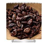 Fresh Roasted Cocoa Beans - Nibs Shower Curtain