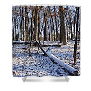 Fresh Snow In The Woods Shower Curtain