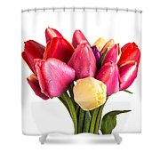 Fresh Spring Tulip Flowers Shower Curtain