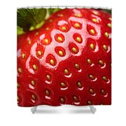 Fresh Strawberry Close-up Shower Curtain