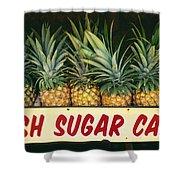 Fresh Sugar Cane Shower Curtain