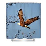 Freshening The Nest Shower Curtain