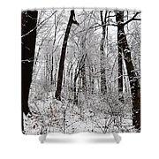 Freshly Fallen Snow Shower Curtain