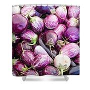 Freshly Harvested Purple Eggplants Shower Curtain