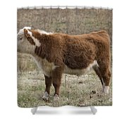 Frick In Profile Shower Curtain