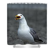 Friday Night At The Gull Bar And Grill Shower Curtain