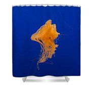 Fried Egg Jelly 2 Shower Curtain