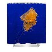 Fried Egg Jelly Shower Curtain